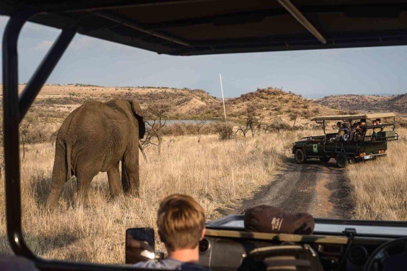 Big-Cat-Safaris-Ndaka-Safari-Lodge13